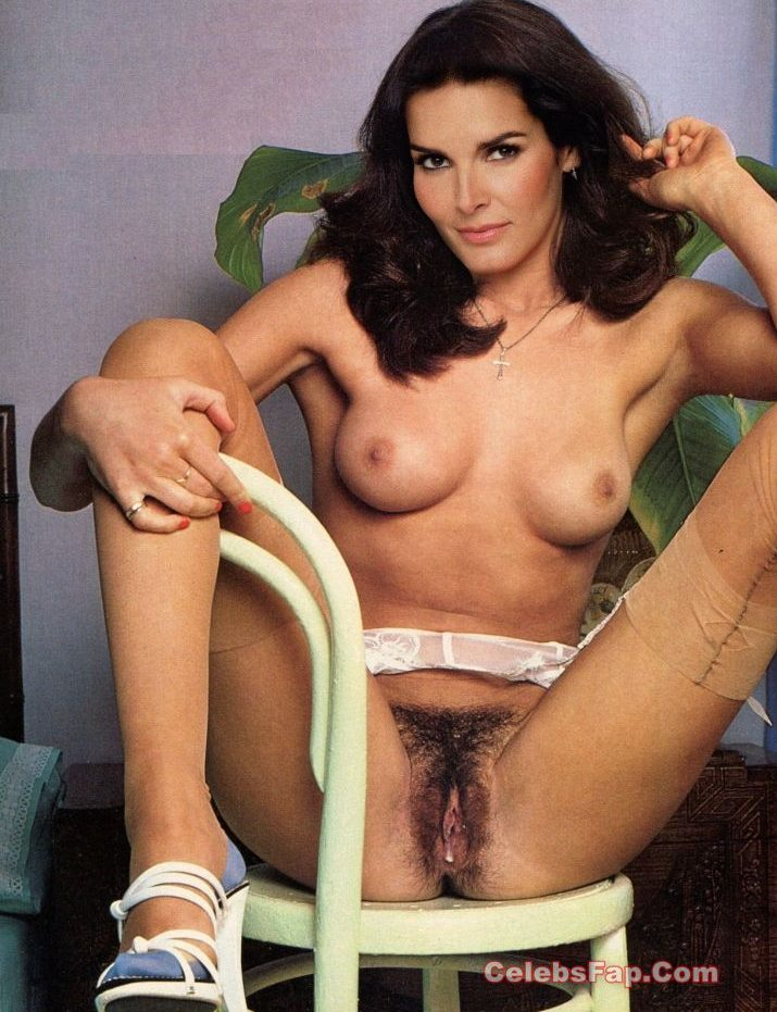 Angie Harmon Nude Exclusive Photo Collection 009