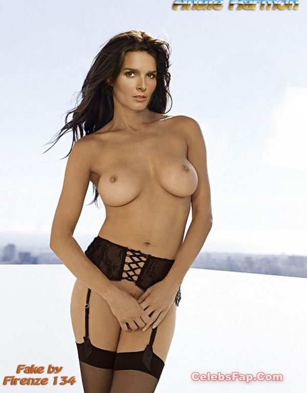 Angie Harmon Nude Exclusive Photo Collection 010