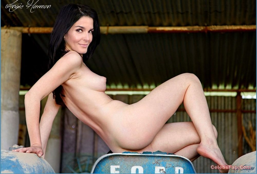 Angie Harmon Nude Exclusive Photo Collection 016